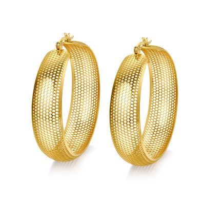 Shining Gold Titanium Steel Earrings