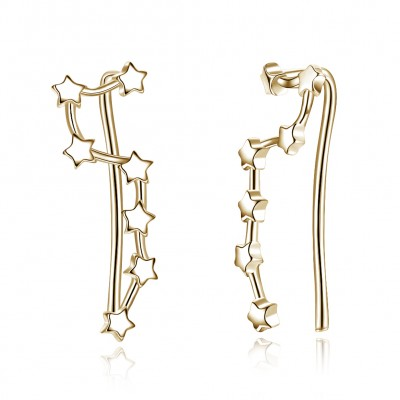 Tinnivi Fashion Gold Plated Star Sterling Silver Drop Earrings